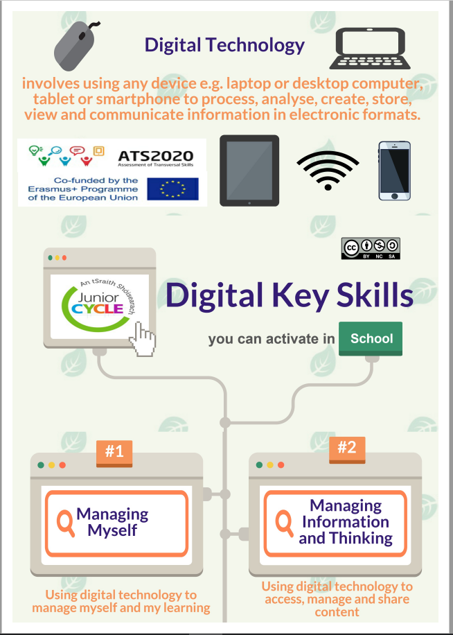 Digital Key Skills Infographic